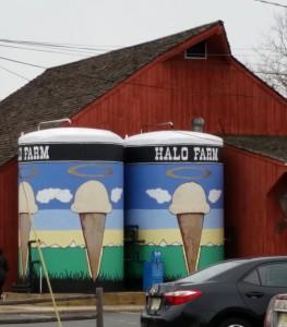 Halo Farm at the Trenton Farmer's Market
